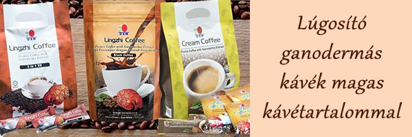 DXN egészséges kávék és törzsvásárlói regisztráció