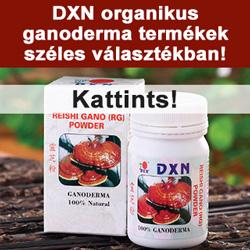 dxn250x250