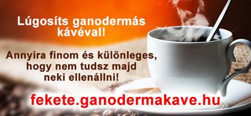DXN Ganodermás kávé vásárlás