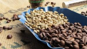 Koffeinmentes kávé előállítása