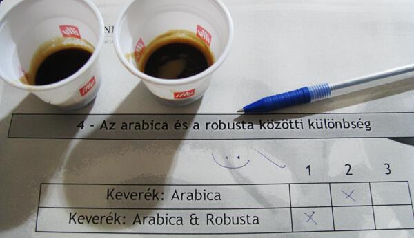 Arabica és robusta kávé kóstolása