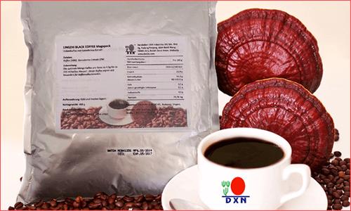 DXN Lingzhi Black Coffee Megapack vásárlás